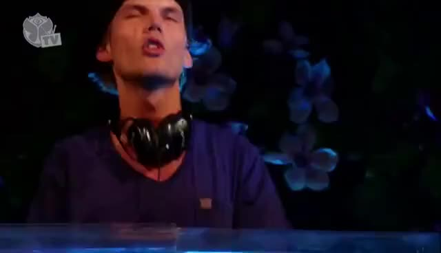 Watch and share Avicii Tomorrowland GIFs on Gfycat