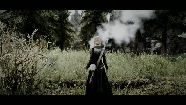 Watch and share Skyrimporn GIFs and Gaming GIFs by provenflawless on Gfycat