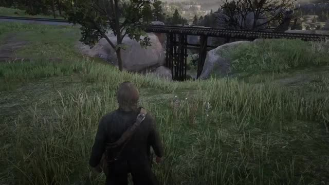 Watch RedDeadRedemption2 XboxShare GIF on Gfycat. Discover more related GIFs on Gfycat
