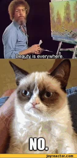 Watch and share Graffiti Grumpy Cat Photo GIFs on Gfycat