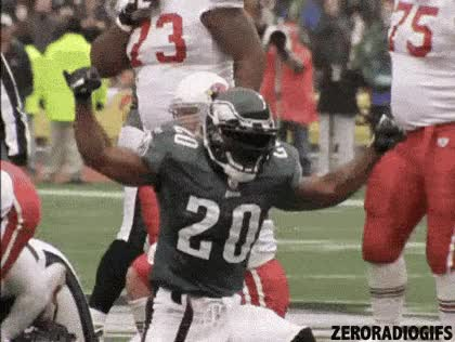 Watch eagles gif GIF on Gfycat. Discover more related GIFs on Gfycat