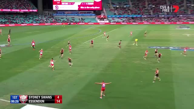 Watch and share Essendon Bombers GIFs and After The Siren GIFs on Gfycat
