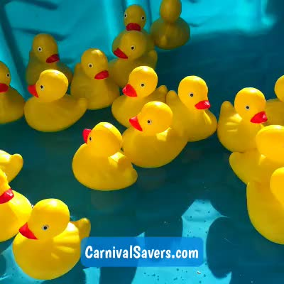 Watch and share Floating Ducks GIFs and Rubberducks GIFs by Carnival Savers on Gfycat