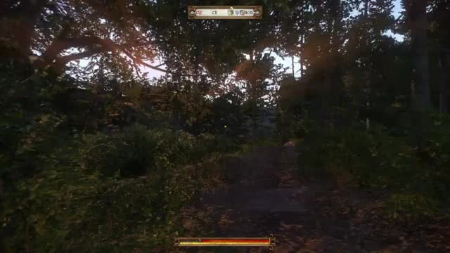 Watch Kingdom Come Deliverance 3 GIF by @shaun_collins on Gfycat. Discover more related GIFs on Gfycat