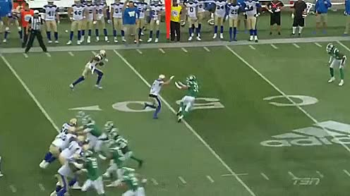 Watch and share Pass Interference GIFs and Mosaic Stadium GIFs by Archley on Gfycat