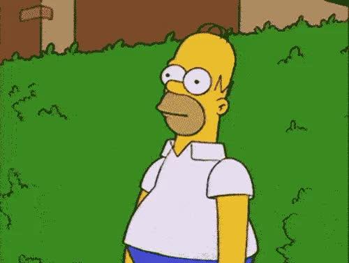 Watch and share Homer Simpson Bush GIFs on Gfycat