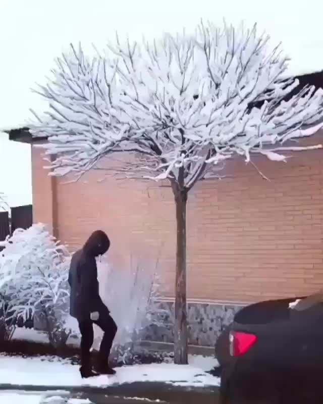 Watch and share Snow Tree GIFs by PM_ME_STEAM_K3YS on Gfycat