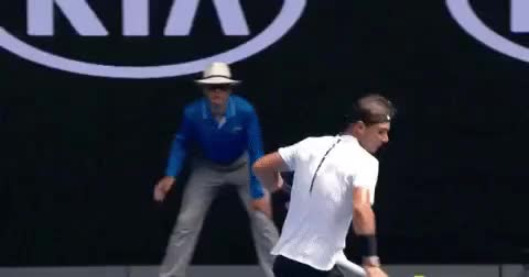 Watch australian open – Page 9 – Monster GIF on Gfycat. Discover more related GIFs on Gfycat