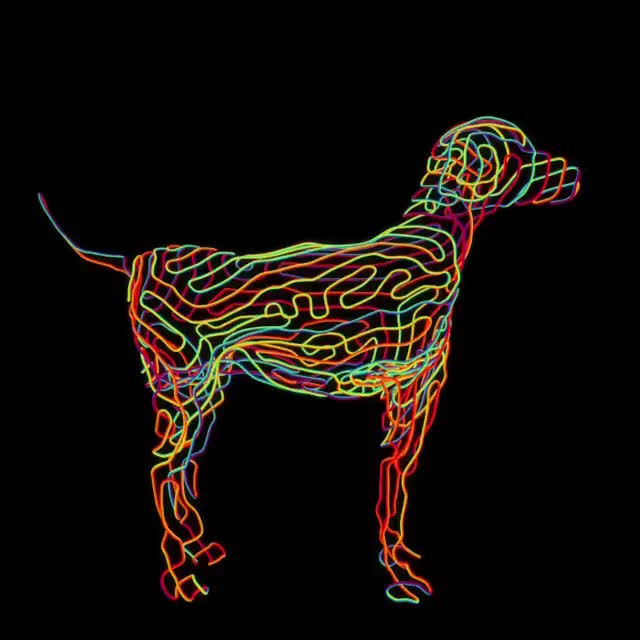 Watch [A] Dog GIF on Gfycat. Discover more perfectloops GIFs on Gfycat