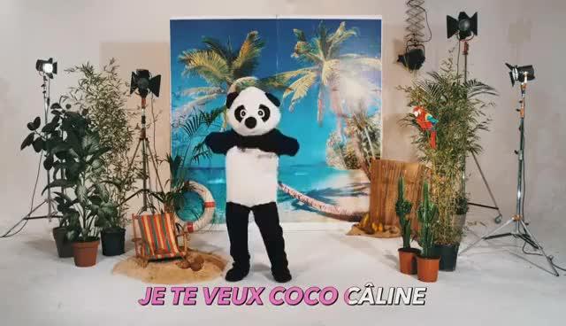 Watch and share Julien Doré - Coco Câline GIFs on Gfycat