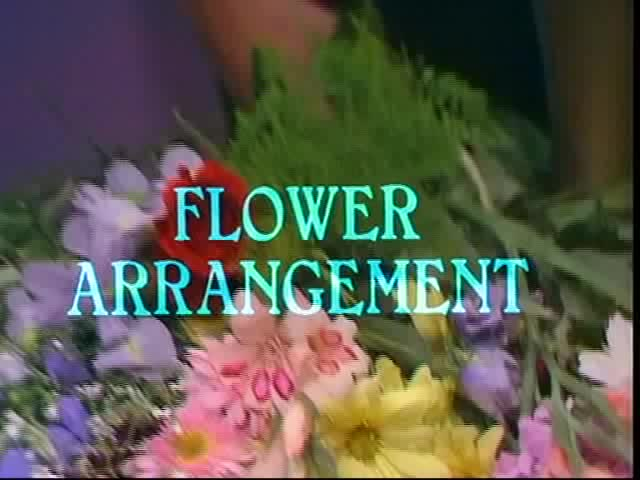 Watch Monty Python - Flower Arranging GIF on Gfycat. Discover more comedy, flower arranging, flying circus, gumby, holmleighnyd, monty python GIFs on Gfycat