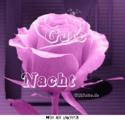 Watch and share Gute Nacht GIFs on Gfycat