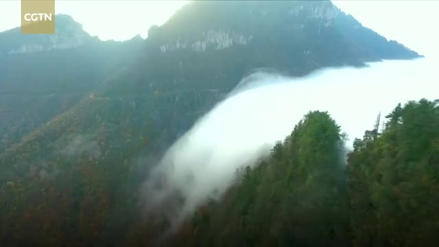 Watch Sea of clouds flows like waterfall in central China GIF by solateor (@solateor) on Gfycat. Discover more Breaking, CCTV, CCTVNews, CGTN, ChinaNews, News, WorldNews, cloud, scenery, sea of clouds GIFs on Gfycat