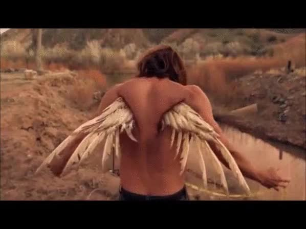 Watch and share Angel GIFs by AdamonVonEden on Gfycat
