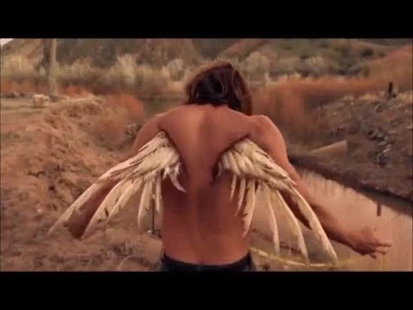 Watch and share Angel GIFs by AdamonVonEden on Gfycat