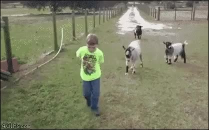 Watch and share Kid Gets Sacked (i..com) GIFs on Gfycat
