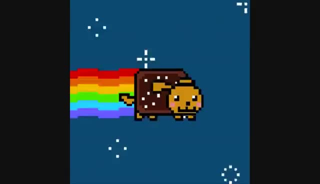 Watch and share Nyan Dog GIFs on Gfycat