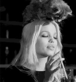 Watch this GIF on Gfycat. Discover more daphne groeneveld GIFs on Gfycat