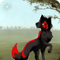 Watch and share Black And Red Wolf Betty GIFs on Gfycat