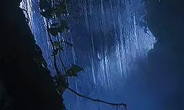 Watch and share Jurassic Park Iii GIFs and Jurassic World GIFs on Gfycat