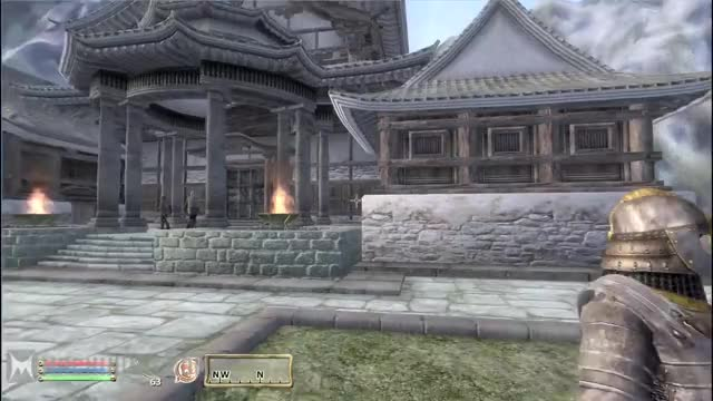 Watch and share Oblivion GIFs and Gaming GIFs on Gfycat