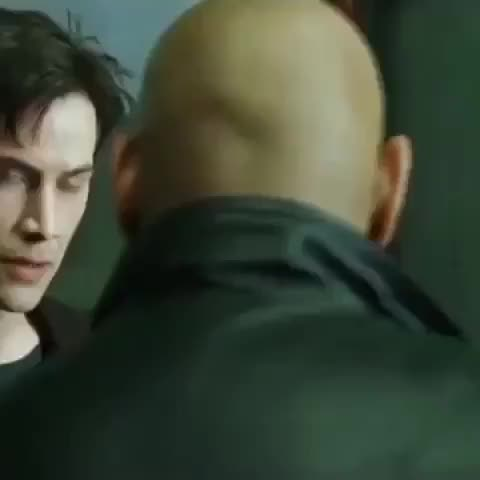 Watch If the Matrix was real. GIF on Gfycat. Discover more PeopleFuckingDying GIFs on Gfycat