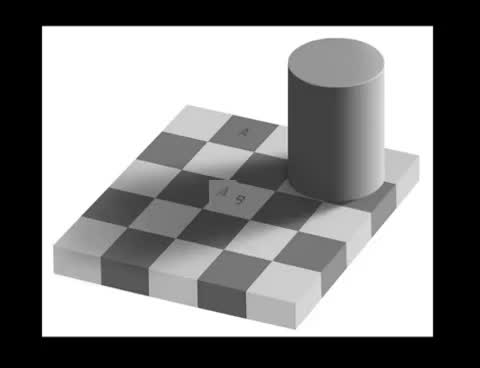 Watch The chessboard experiment GIF on Gfycat. Discover more optical GIFs on Gfycat