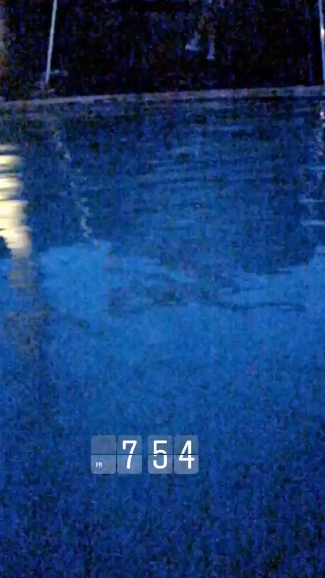 courtneytailor 2018-09-26 08:55:23.105 GIFs
