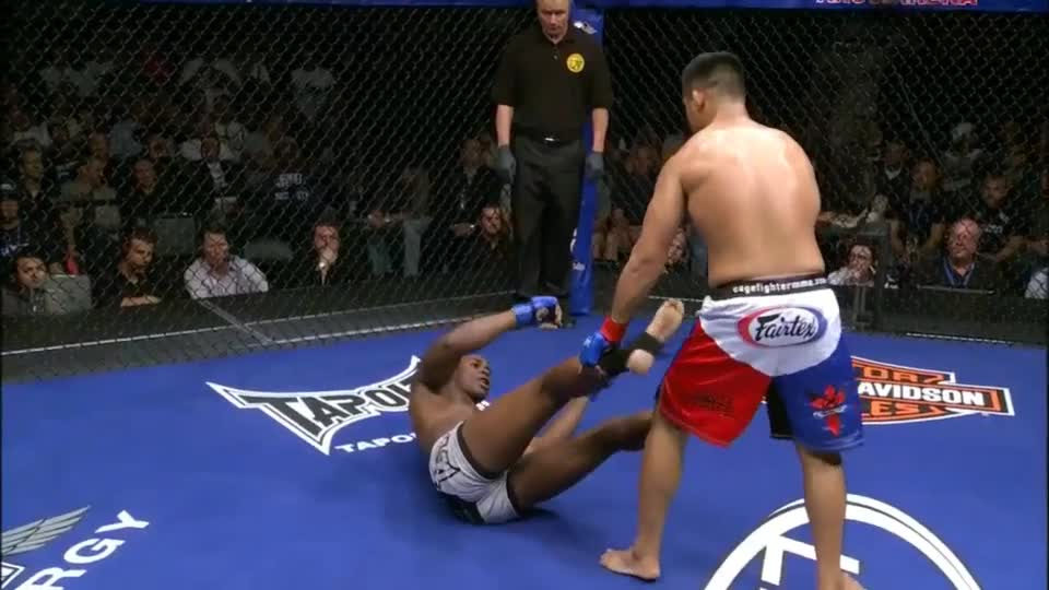 Fighting, Fights, Groundandpound, KO, Knockout, MMA, UFC, WEC, punches, Mark Munoz WEC KO! GIFs