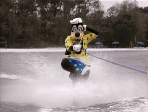 Watch and share Water Skiing animated stickers on Gfycat