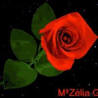 Watch and share ROSA MUDANDO COR GIFs on Gfycat