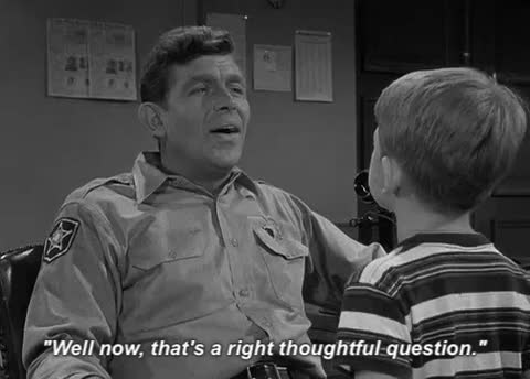 "Watch and share 12 Lessons Learned From ""The Andy Griffith Show"" GIFs on Gfycat"