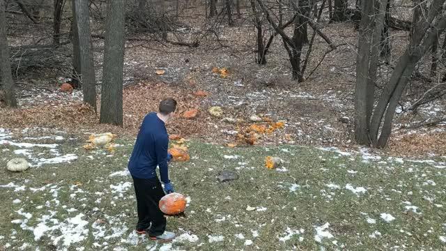 Watch and share Throw Dat Pumpkin GIFs by mcguigin on Gfycat