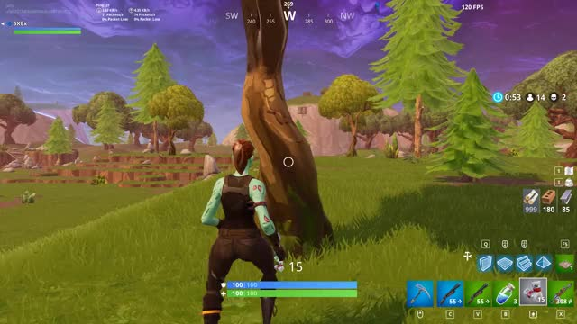 Watch and share Battle Royale GIFs and Fortnite Br GIFs by mrsxeplatypus on Gfycat