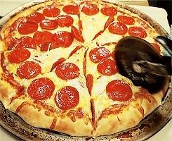 food, gif, mine, pepperoni, pizza, Lusting Food GIFs