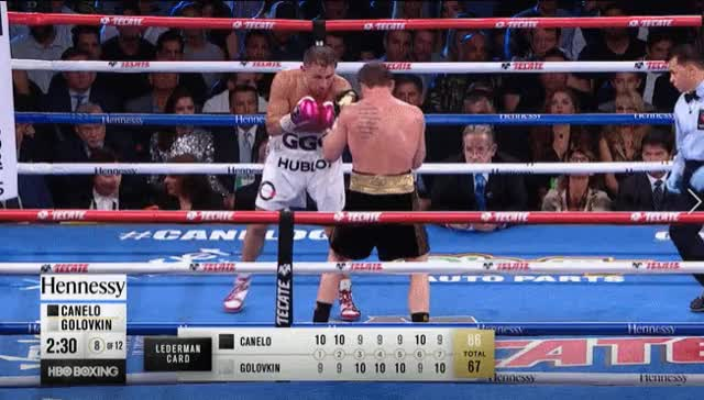 Watch GGG Canelo 6 GIF on Gfycat. Discover more related GIFs on Gfycat