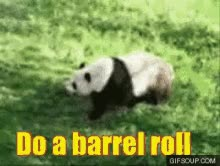 Watch Barrel Roll GIF on Gfycat. Discover more related GIFs on Gfycat