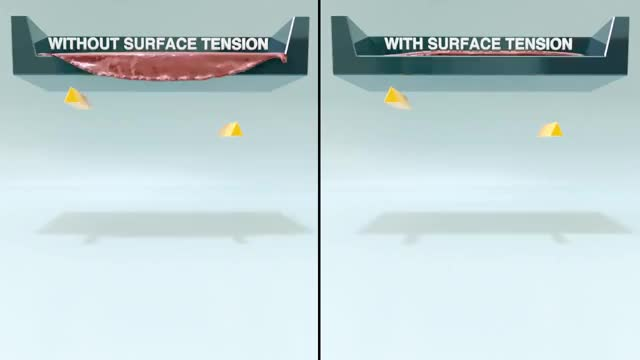 Watch and share Surface Tension Comparison GIFs on Gfycat