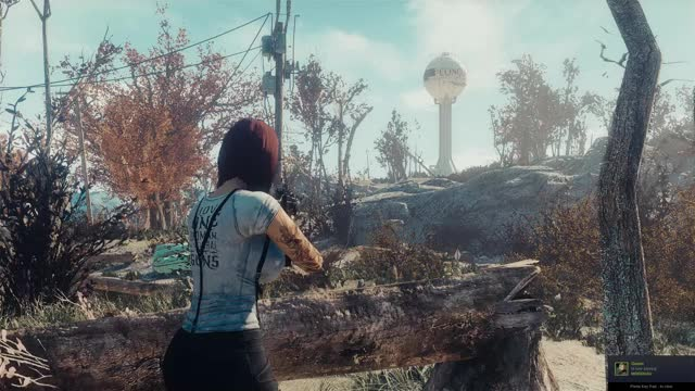 Watch and share Fallout4 2019-05-26 20-12-46 GIFs on Gfycat