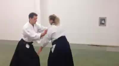 aikido,  GIFs