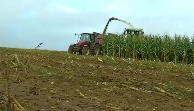 Watch and share Claas GIFs on Gfycat