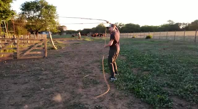 Watch and share Rope GIFs on Gfycat