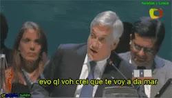Watch gif LOL gifs Piñera evo gifestupido funados GIF on Gfycat. Discover more related GIFs on Gfycat