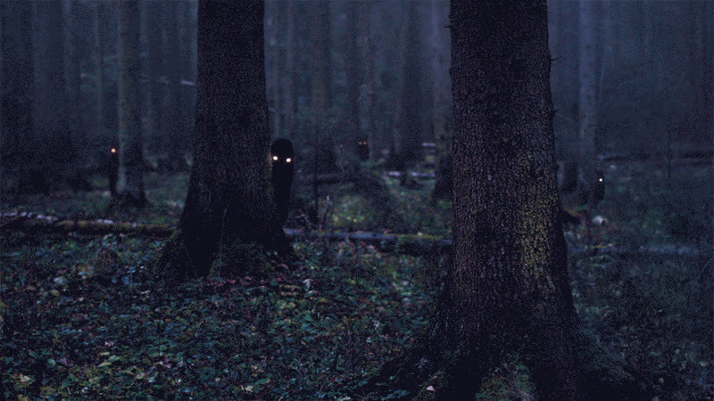 creepygifs, forrest, shadows, It's impolite to stare GIFs