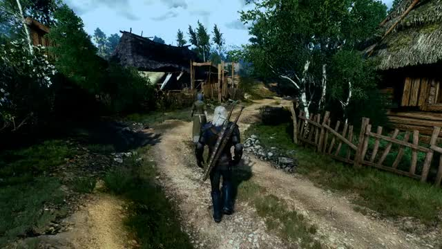 Watch and share Witcher GIFs by thestr8dope on Gfycat