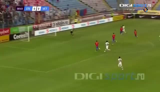 Watch and share Best Of Gigi Becali 2013 - Ultimul Episod GIFs on Gfycat