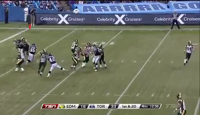 Watch and share CFL Nate Coehoorn's Amazing Catch GIFs on Gfycat