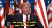 Watch and share Build Wall GIFs on Gfycat