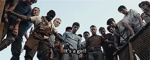 Watch The Maze Runner GIF on Gfycat. Discover more related GIFs on Gfycat