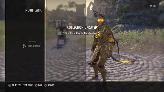 Watch and share Eso GIFs by fakegirl on Gfycat